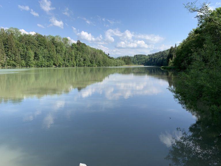 Read more about the article Altusried (Allgäu) – Wildnis an der Iller genießen